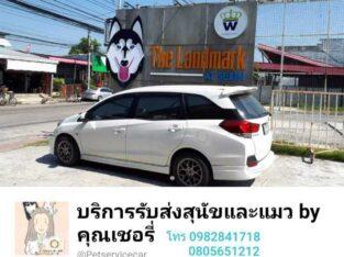 รถบริการรับส่งสุนัขและแมว by  คุณเชอรี่