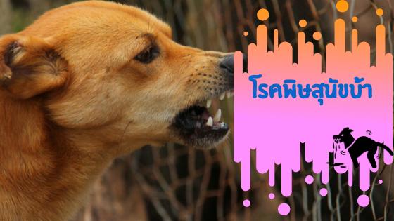 อาการโรคพิษสุนัขบ้า